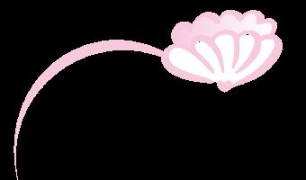 Muschel_Logo_nur_Muschel_web